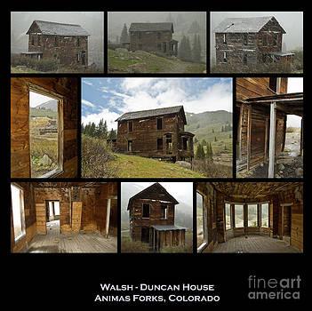 Tim Mulina - Walsh - Duncan House 3