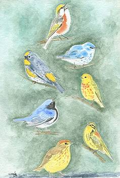 Warblers 2 by Wenfei Tong