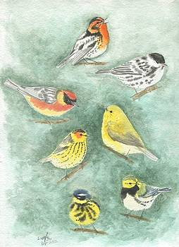 Warblers1 by Wenfei Tong