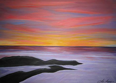 Warm Ocean Sunset by Liz Angeles