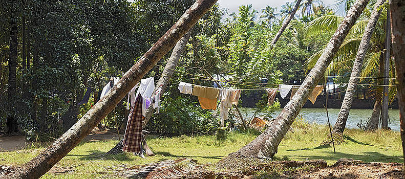 Kantilal Patel - Washing line in the Jungle