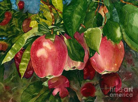 Washington Apples by Laura Ramsey