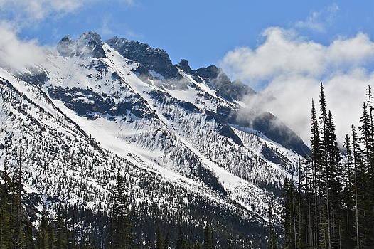 Washington Cascades by Diana Hatcher