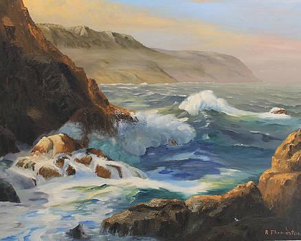 Washington Coast by Robert Thomaston