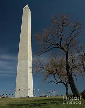 Tim Mulina - Washington Monument