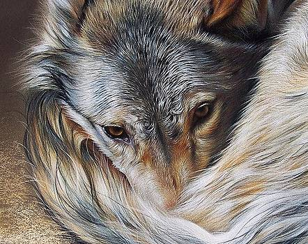 Elena Kolotusha - Watchful Rest -close-up detail
