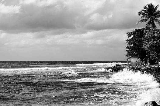 Water and waves at Carrot Bay in black and white by Anya Brewley schultheiss