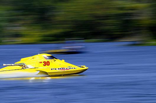 Randall Branham - Water Canary