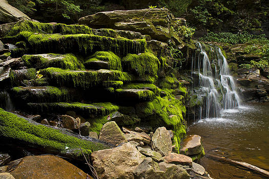Water Fall Rickett Park PA by Stephen EIS