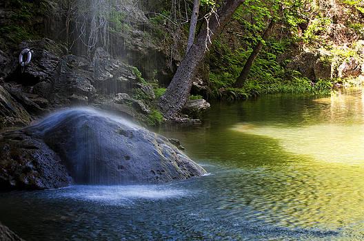 Lisa  Spencer - Water Falling on Rock