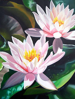 Water Lilies 2 by Donna Francis
