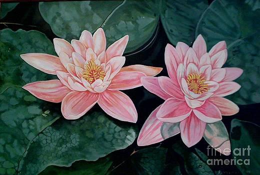 Water Lillies by Kimberlee  Ketterman Edgar