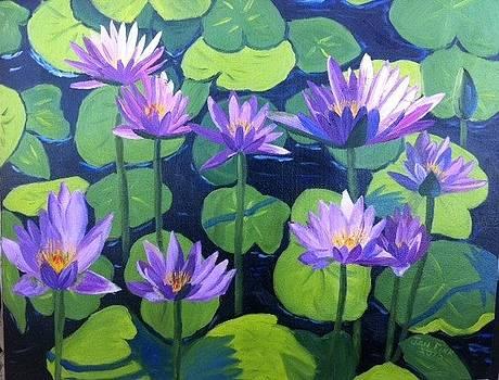 Water LIllys by Jan Fink