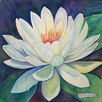Water Lily  by Norma Boeckler