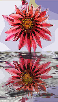 Water reflection of a flower by Jesus Nicolas Castanon