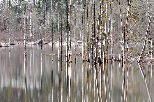Water Scenery Photograph - Winter Reflections by Light Shaft Images
