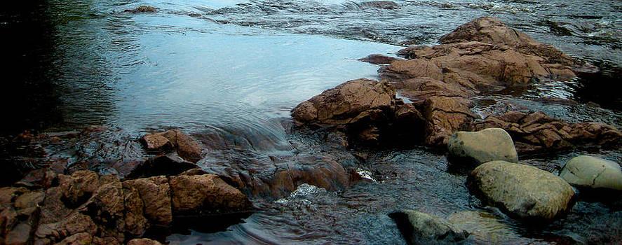 Water by Shweta Singh