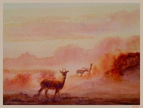 Watercolor Morning by Mona Davis
