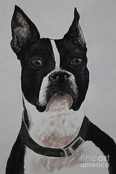 Watercolor my loyal boston by Ralph Hecht