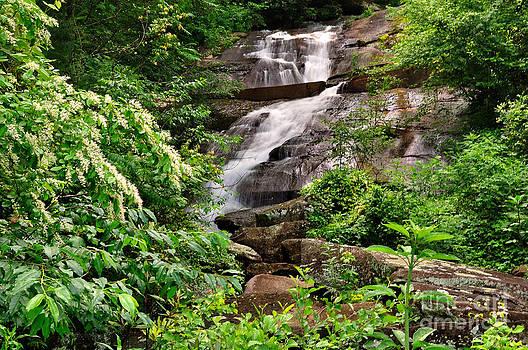 Wayne Nielsen - Waterfall in Mountain Green