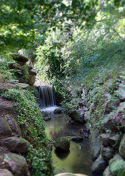 Waterfall in Prospect Park by Julie VanDore