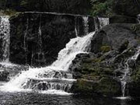 Waterfall by Marie Albanese