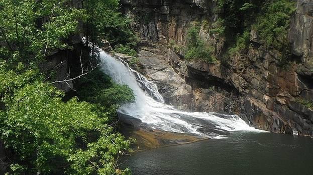 Waterfall by Terrill Wilson