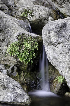 Waterfall by Vanessa Espinoza