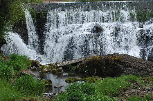 Waterfalls by Wanda Jesfield