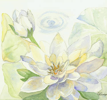 Waterlillies by Wendy Cunico