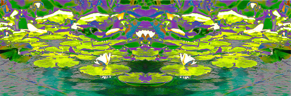 Waterlily Pond by Nabila Khanam