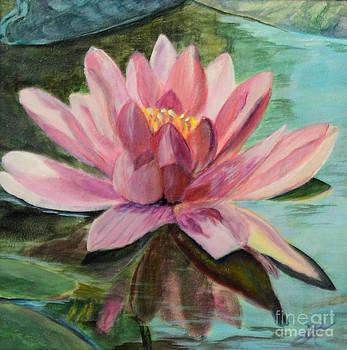 Waterlily Study in Acrylic by Marlene Petersen