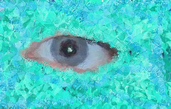 Watery Eye by Mark Stidham