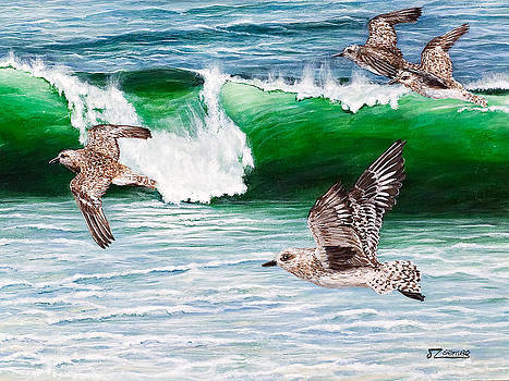 Wave Darting by Jim Ziemer