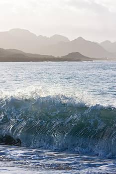 Wave by Dina Calvarese