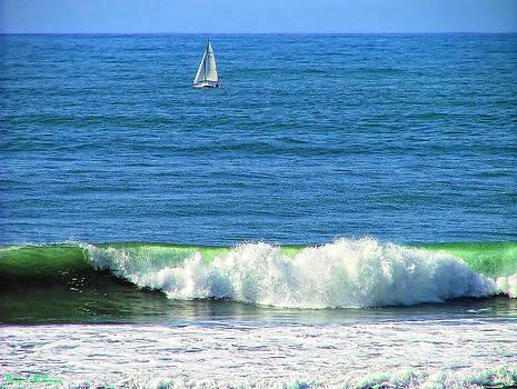 Wave Sail by Wendy McKennon