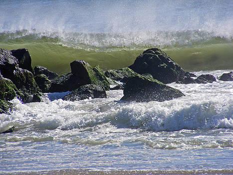 Wave Versus Rock by Carol Bruno