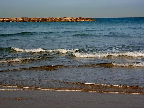 Waves by Jennifer Wartsky