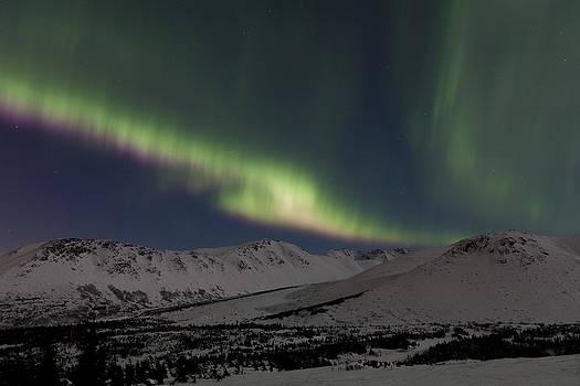 Tim Grams - Waves of Northern Lights