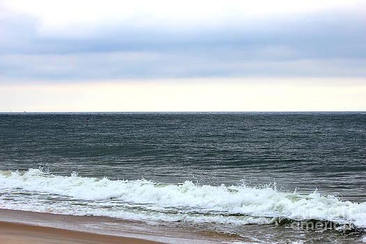 Waves Rolling In by LillyAnn Venturino
