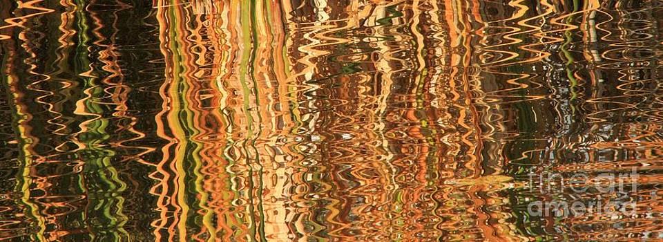 Roland Stanke - wavy reflections