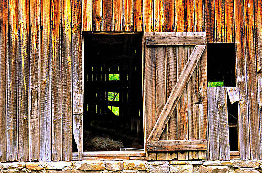 Marty Koch - Weathered Barn Door