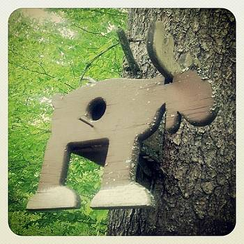 Weathered Moose Birdhouse by Christy Bruna