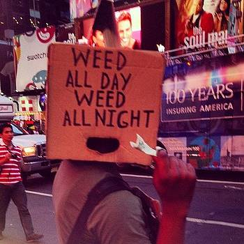 Weed All Day Weed All Night In Times by Gerry Visco