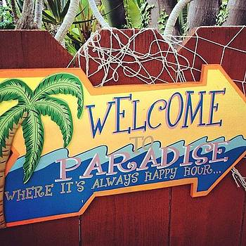 Welcome to paradise by Lauren Laddusaw