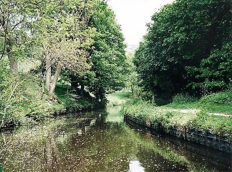 Marilyn Wilson - Welsh Canal