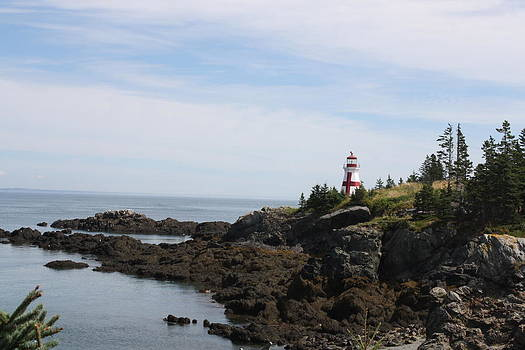 Donna Walsh - West Quoddy Head Lighthouse