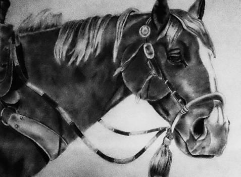Western Horse by Scott Hawkman
