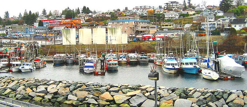 Westview Harbour by Shawn Hegan