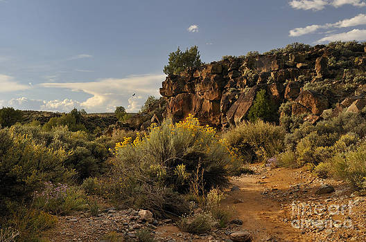 Westward Across The Mesa by Ron Cline